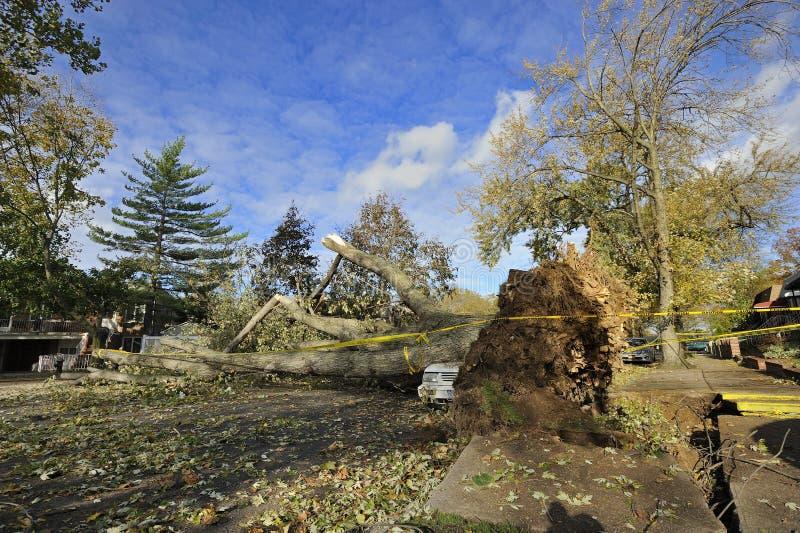 Uragano Sandy fotografie stock libere da diritti