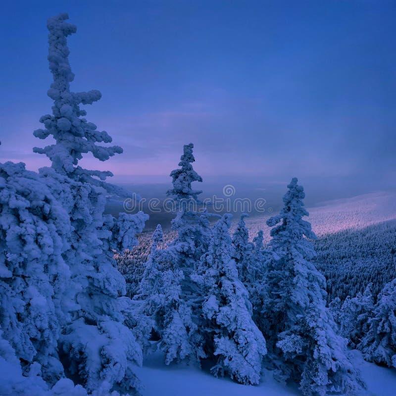 Ural Lapland fotografia stock libera da diritti