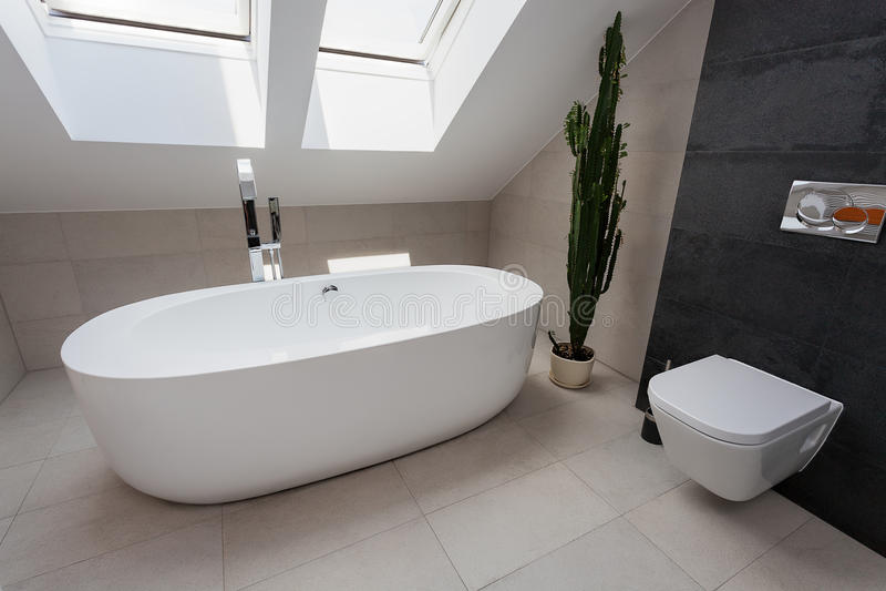 Urban apartment - luxury bathroom stock images