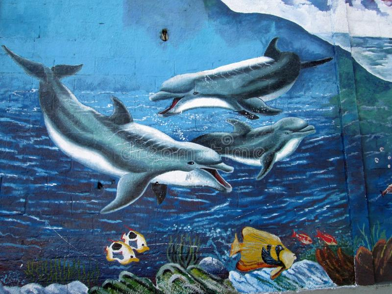 Urban Art. Dolphins. Photo of a mural painted on a wall . Barcelona , Venezuela , South America. Shows three dolphins in a marine environment with coral and stock photo
