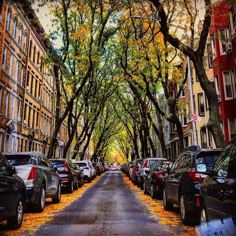 City life. Urban city life royalty free stock photo