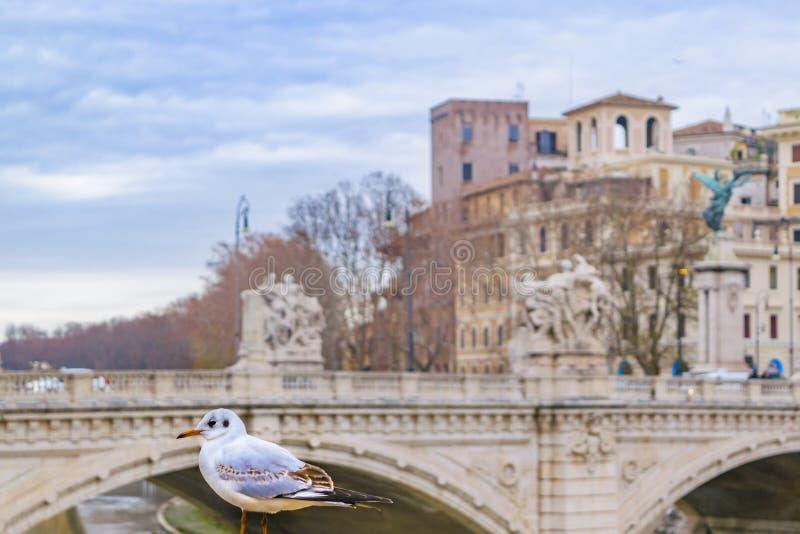 Ponte Vittorio Emanuele II, Rome, Italy royalty free stock photo