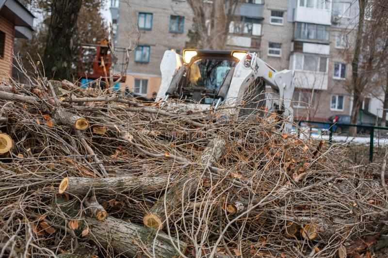 Urban emergency service removes a fallen tree on a road with special equipment tractor.  stock photos