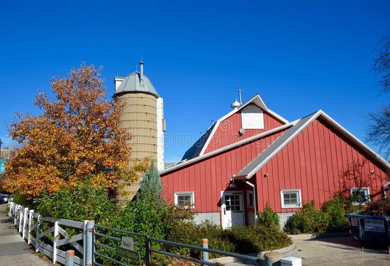 Urban Farm In The Fall. This is a Fall picture of the urban farm at Lincoln Park Zoo located in Chicago, Illinois. This picture was taken on November 2, 2015 stock photography