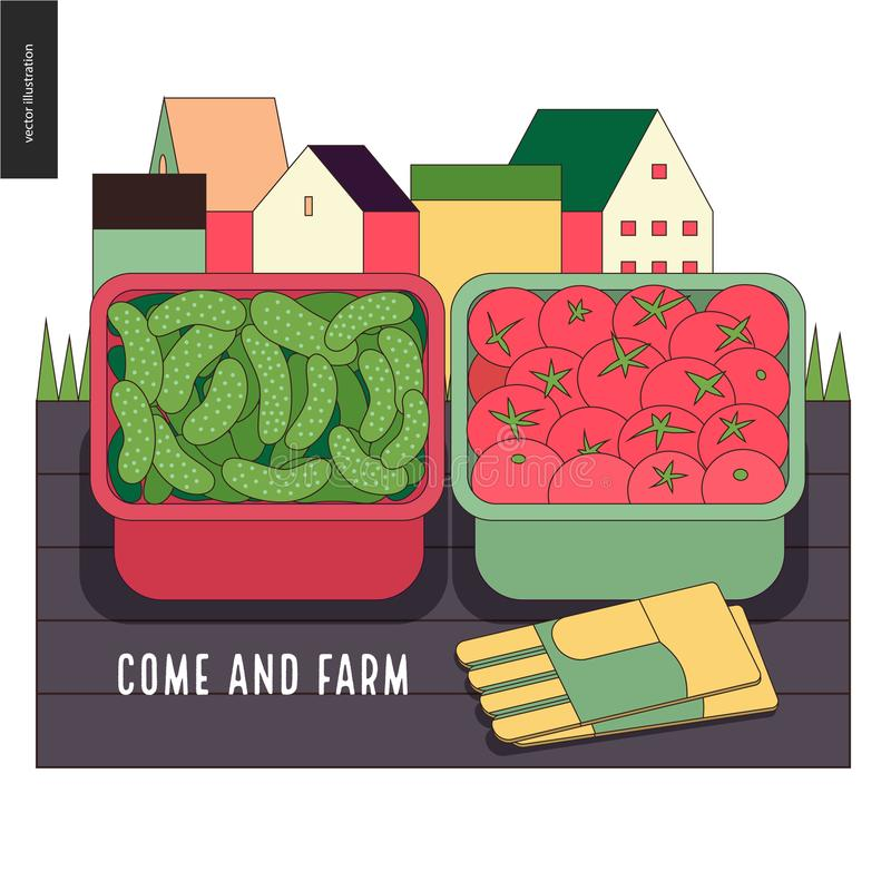 Urban farming and gardening - cucumbers and tomatos harvest. Urban farming, gardening or agriculture, harvest. Two containers filled with cucumbers and tomatos royalty free illustration