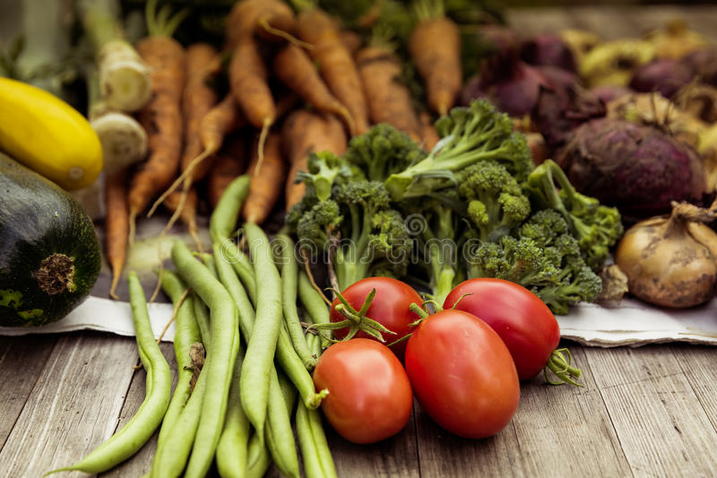 Urban gardening vegetable harvest crop. Bio self-sufficiency with raised bed royalty free stock photography