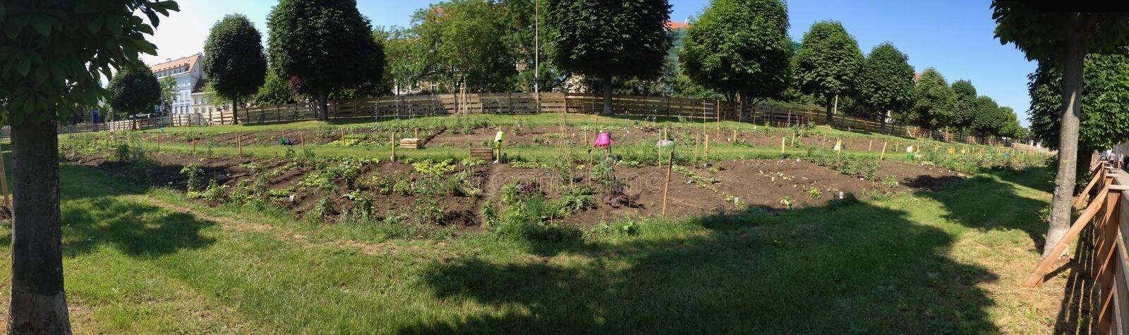 Urban gardening in Vienna Austria at the Augarten. Sustainability Concept royalty free stock images