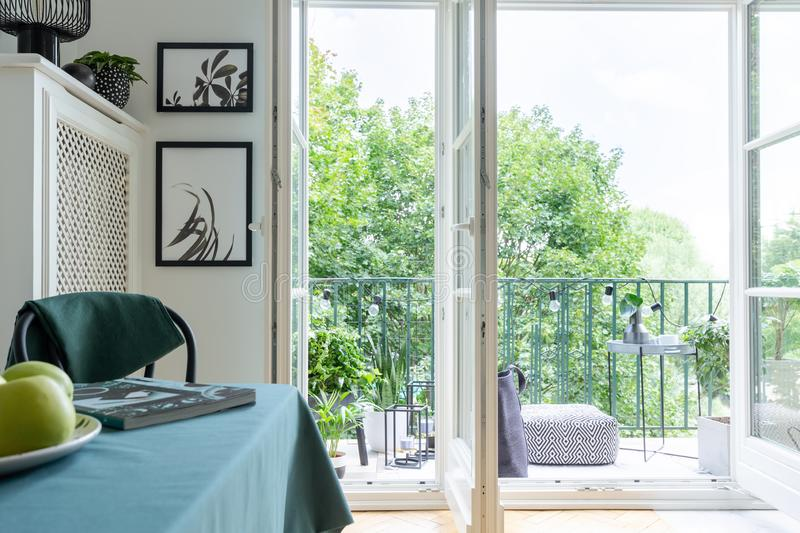 Urban jungle with green plants and trees outside a white dining room interior stock image
