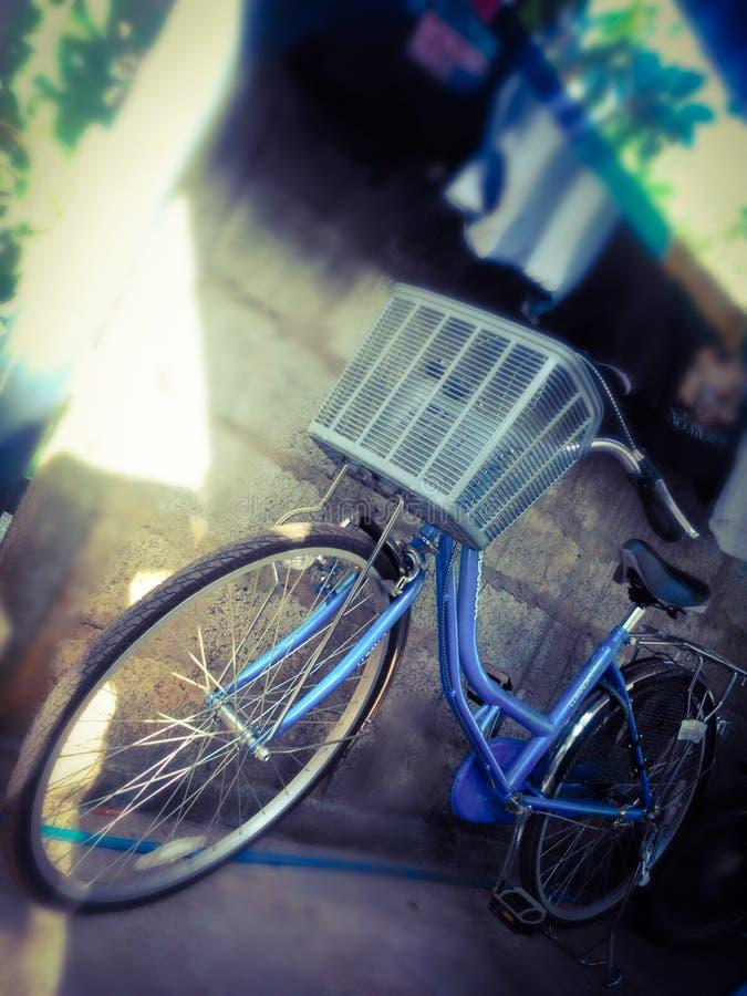 Urban ladies bicycle stock images