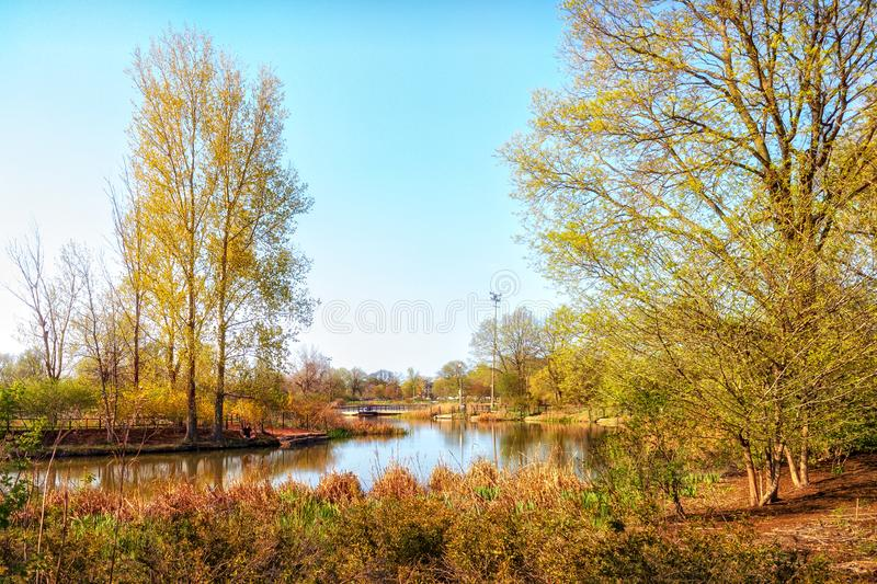 Urban Lagoon and Nature Preserve. Chicago, USA. Landscape. royalty free stock photo