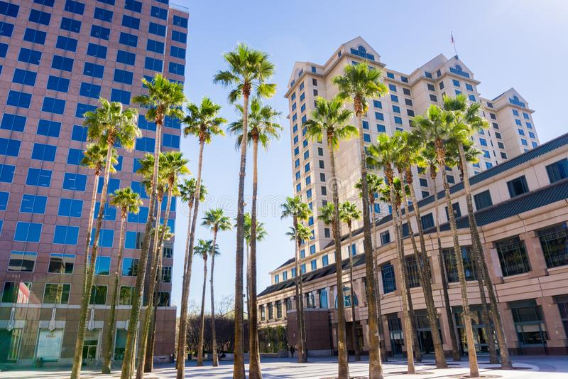 Urban landscape in downtown San Jose, California. Urban landscape with palm trees in downtown San Jose, Silicon Valley, California stock image