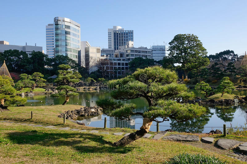 Urban parkerar i Tokyo, Japan royaltyfria bilder