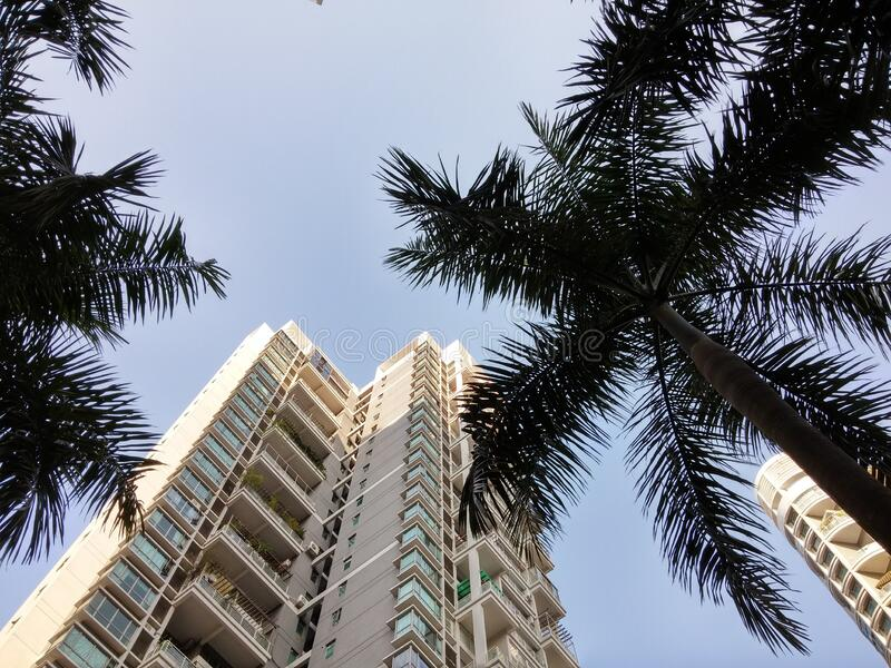 Urban residential building architectural landscape in shenzhen, China. Urban residential building architectural landscape, tall buildings stock photos