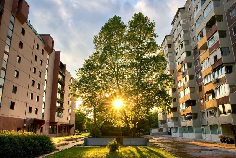 Download Urban sunset stock image. Image of cityscape, europe, tree - 9565105
