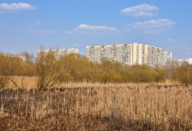 Urban swamp, view of sleeping area from the park. Urban swamp, view of the sleeping area from the park, residential buildings against the blue sky stock photo