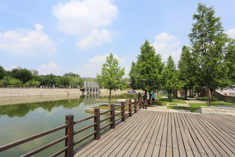 Urban wetland royalty free stock image