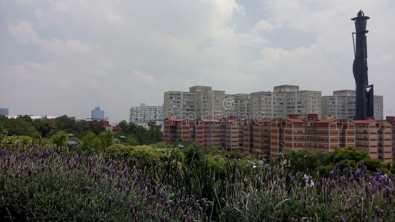 Urbanismen av staden av Mexico i vilka, nyanserna, som finns mellan det naturligt, och staden royaltyfria foton