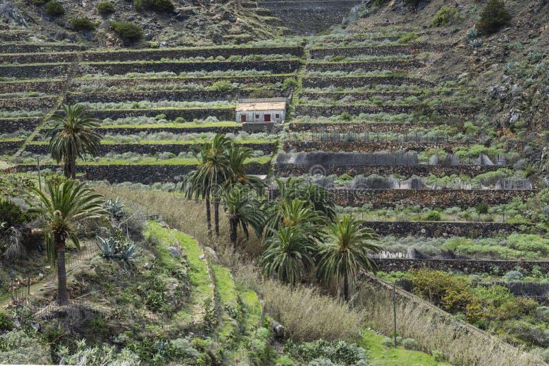 Urbanization on terraces at La Gomera, Canary Islands. Terrace development on the slopes of La Gomera, Canary island, Spain stock images