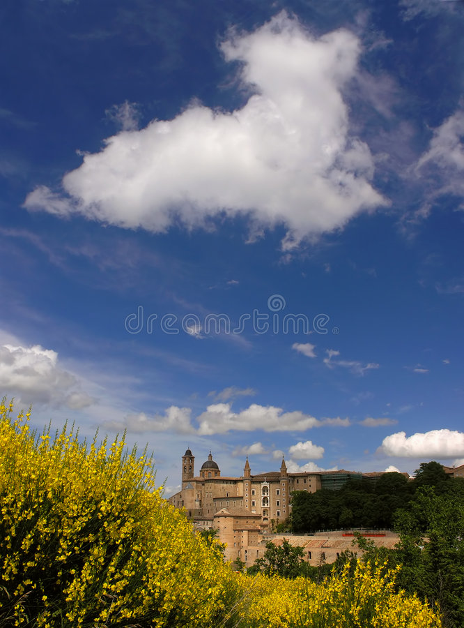 Urbino stockfotos