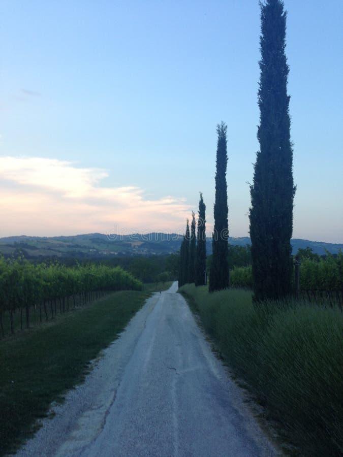 Urbino Italia imagen de archivo libre de regalías