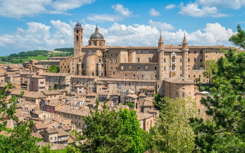 Urbino, stad och världsarv i den Marche regionen av Italien royaltyfri fotografi