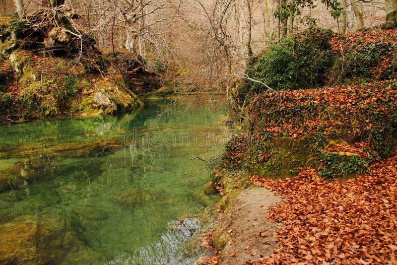 Urederra rzeka, park zdjęcie stock