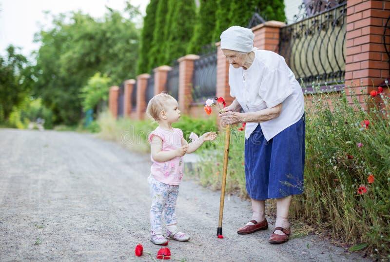 Urgroßmutter- und Kleinkindmädchen, das draußen Blumen auswählt lizenzfreies stockbild