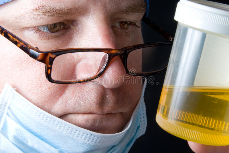 Urine Specimen. A doctor examining a fresh urine specimen royalty free stock images
