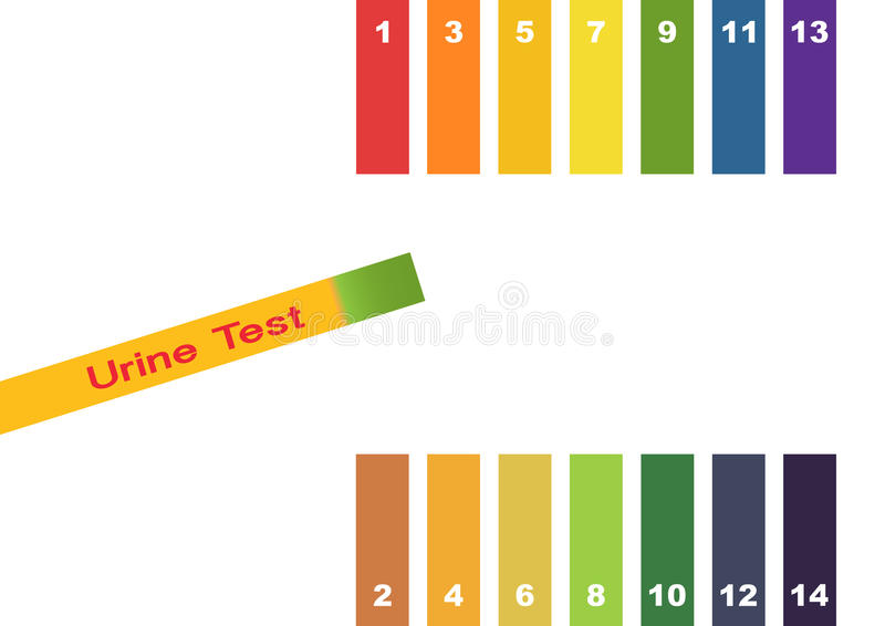 Urine Test . Hand holding test tube with pH indicator comparing color to scale and litmus strips for measurement of acidity. stock illustration