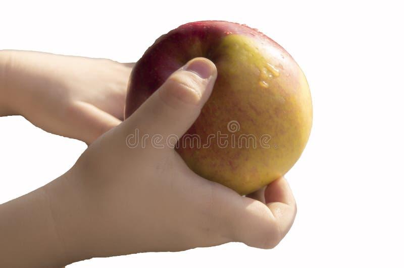 Urklippet behandla som ett barn rymma en mogna Apple, närbilden, solljus, det sunda matbegreppet för ungar arkivfoton