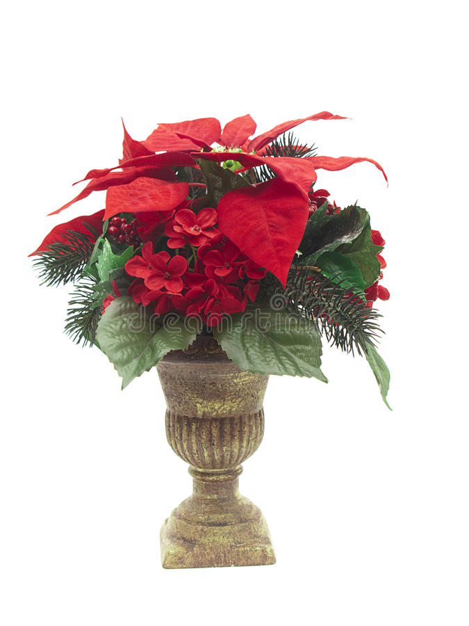 download urn with christmas flower arrangement on white stock image image