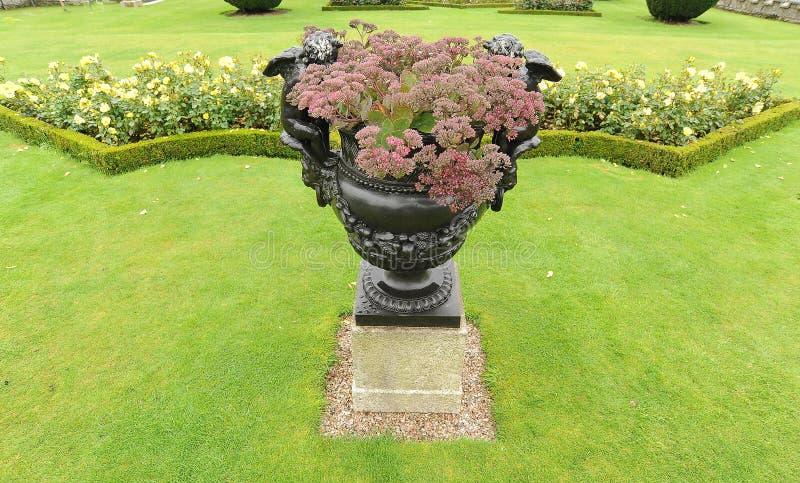 Urn i trädgård royaltyfri foto