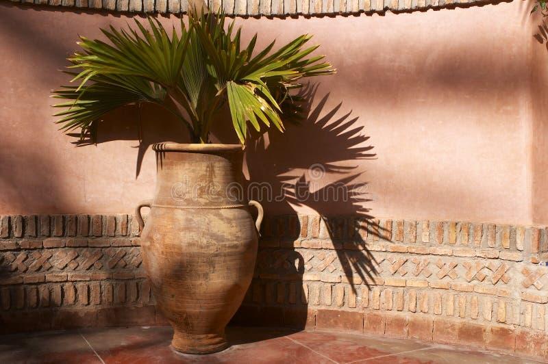 Urna del jardín con las hojas de palma imagen de archivo libre de regalías