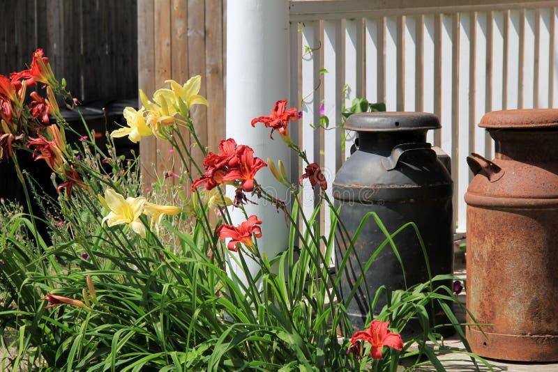 Urnes ornementales de lait sur le porche de la maison de pays images libres de droits