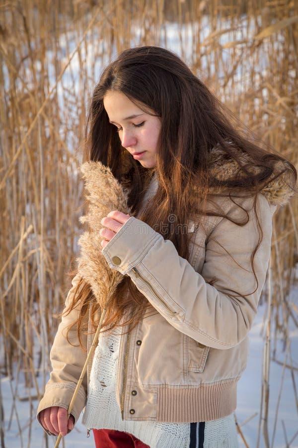 Urocza dziewczyna trzyma trzcinowego trzon przy zima krajobrazem zdjęcia royalty free