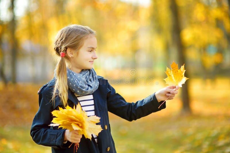 Urocza młoda dziewczyna ma zabawę na pięknym jesień dniu Szcz??liwy dziecko bawi? si? w jesie? parku Dzieciaka zgromadzenia spadk zdjęcie stock