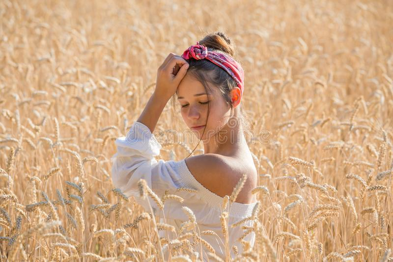 Urocza młoda dziewczyna na złotym pszenicznym polu zdjęcie royalty free