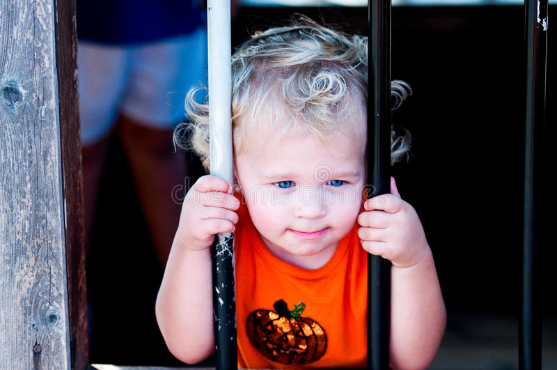 Urocza mała berbeć dziewczyna w dyniowej koszula za barami fotografia stock