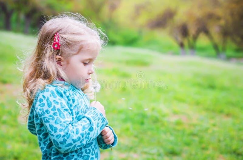 Urocza mała dziewczynka dmucha z dandelion zdjęcia royalty free
