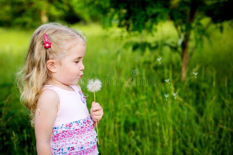 Urocza mała dziewczynka dmucha z dandelion obraz royalty free
