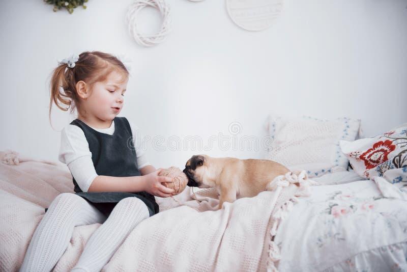 Urocza mała dziewczynka karmi ślicznego mopsa Kupował szczeniaka najlepsza przyjaciółka zdjęcia stock