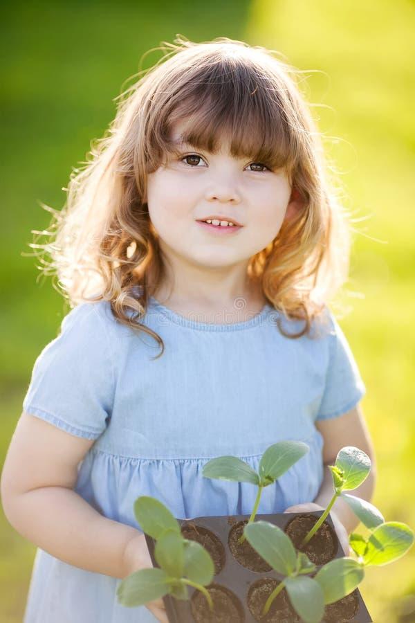 Urocza mała dziewczynka w szklarni obraz stock