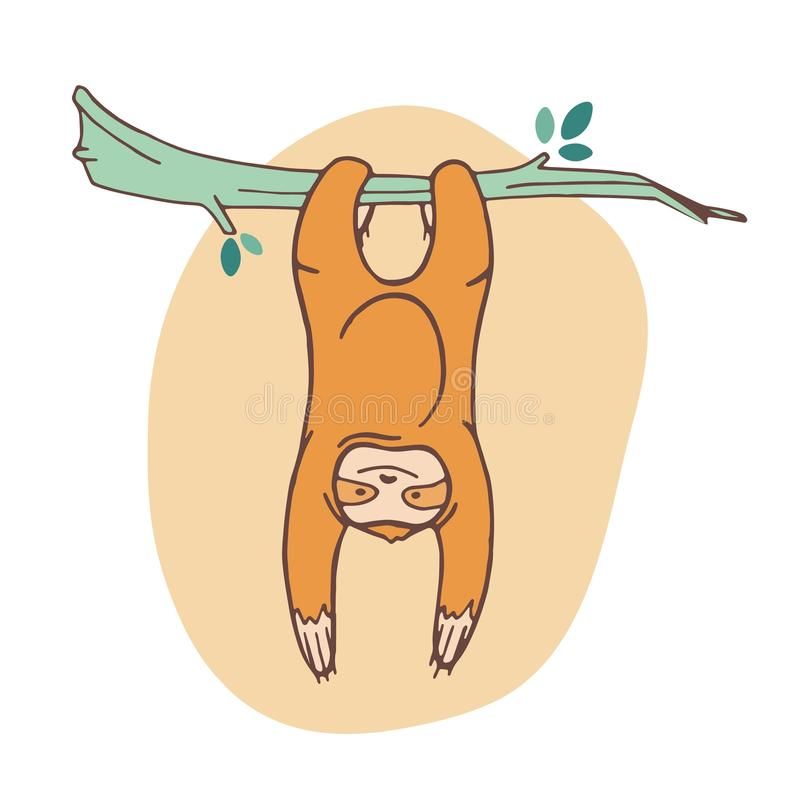 Urocza opieszałość przylega gałąź i obwieszenie Radosny dziki egzotyczny zwierzę bawić się na tropikalnym drzewie kreskówka ślicz royalty ilustracja