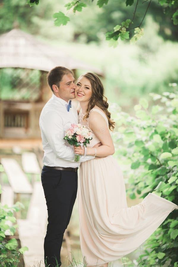 Urocza para w miłości całuje each inny na dnia ślubie, stoi w parku outdoors blisko jeziora fotografia royalty free