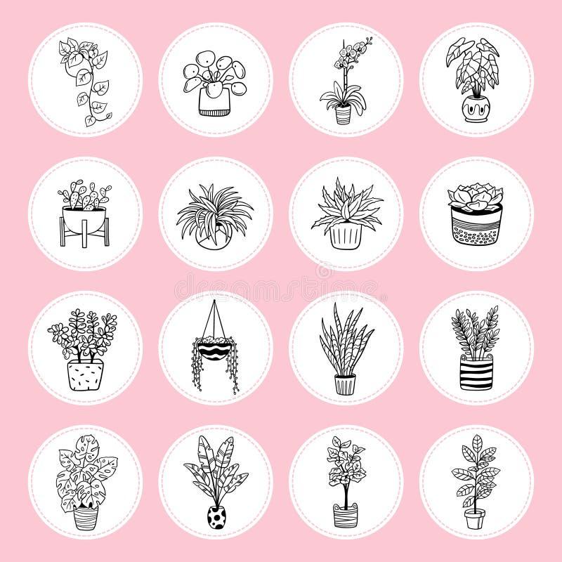 Urocze ikony rośliny w garnkach ilustracji