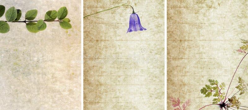 urocze tło tekstury trzy ilustracji