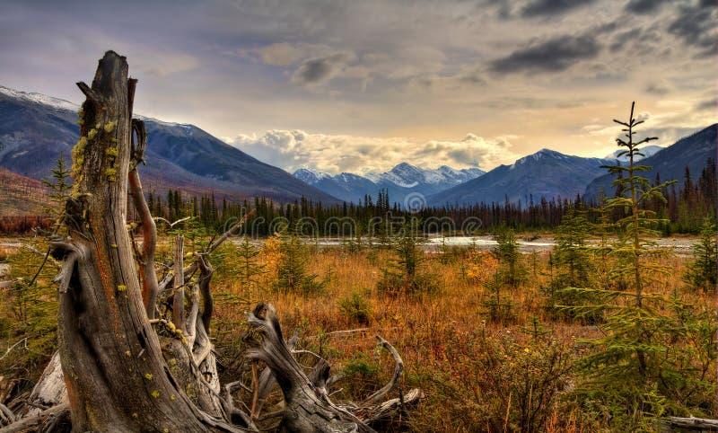 Uroczy dzień Na Kootenay rzeki dolinie obraz stock