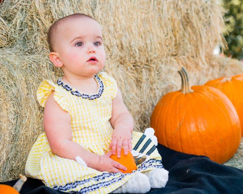 Uroczy jesieni dziecko fotografia royalty free