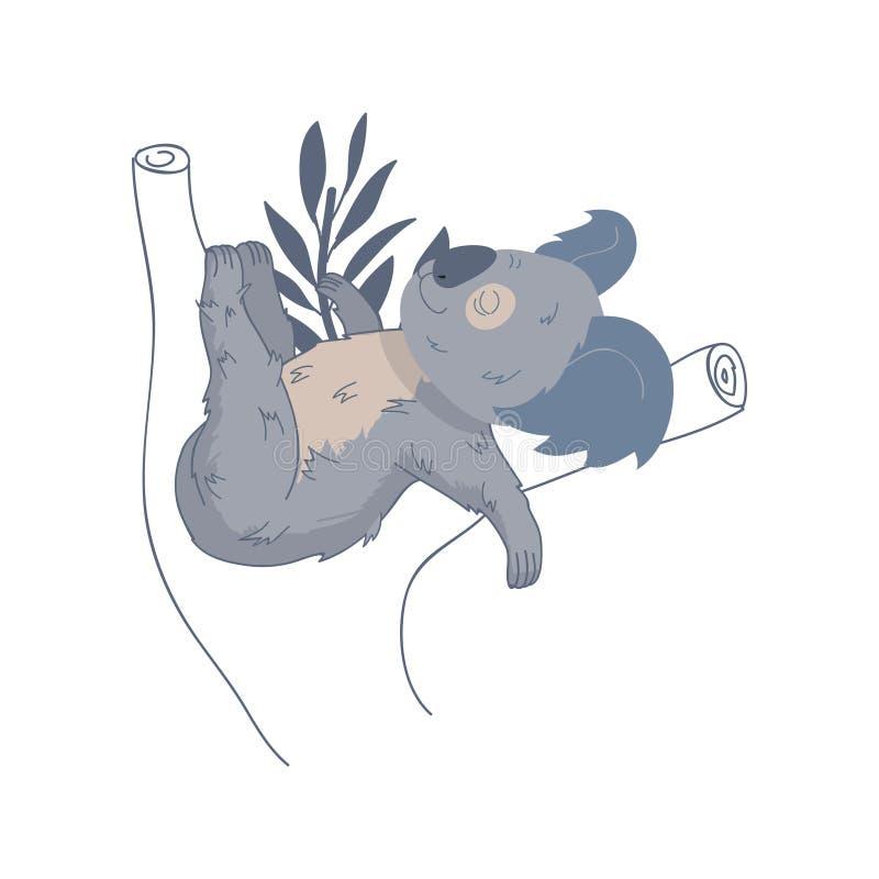 Uroczy koali dosypianie na eukaliptusowym drzewie Australijski torbacza zwierzę Dzika istota Przyroda temat 10 tło projekta eps t royalty ilustracja