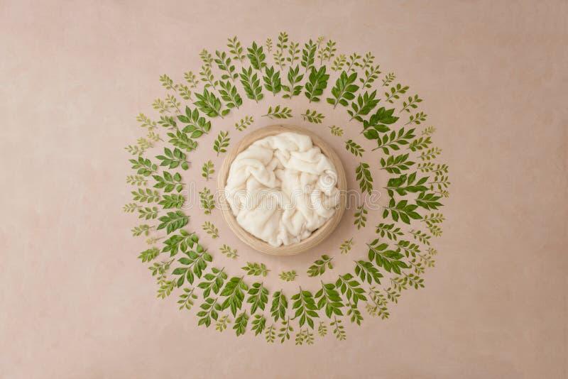 Uroczy kwiatu tło dla nowonarodzonego dziecka, pojęcie nowonarodzeni półdupki obraz royalty free
